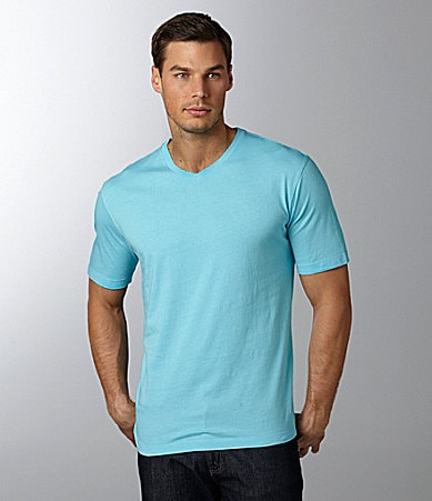 Roundtree & Yorke Big & Tall Solid V-Neck Tee