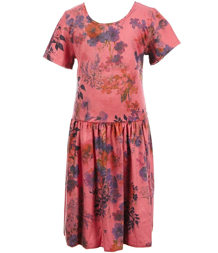 Ella and Lulu Little Girls 2T-6X Printed Floral Dress