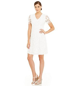 Adrianna Papell Petite Lace Mesh A-Line Dress