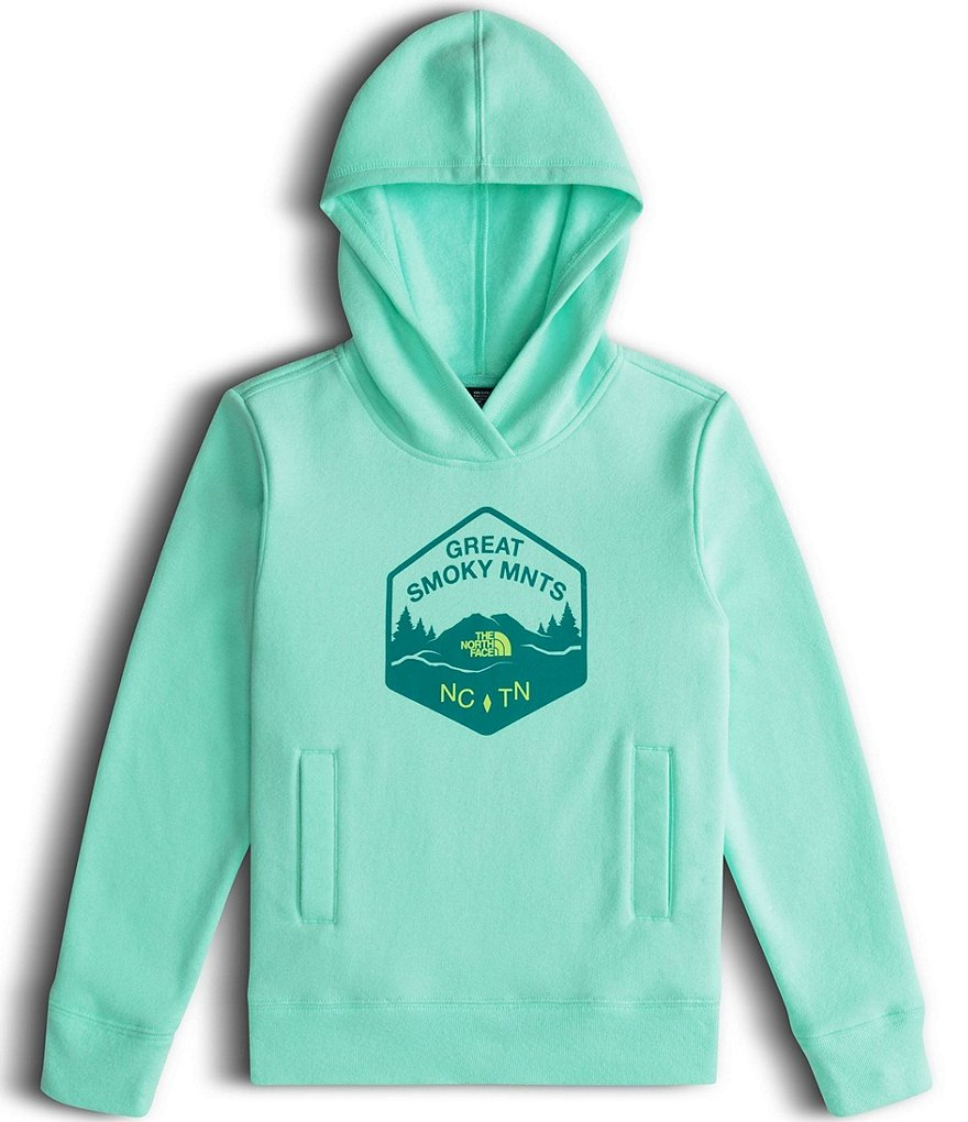The North Face Little/Big Girls 5-18 Logowear Pullover Hoodie Jacket