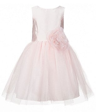 Pippa & Julie Little Girls 2T-6X Floral-Appliqué Mesh Ballerina Dress