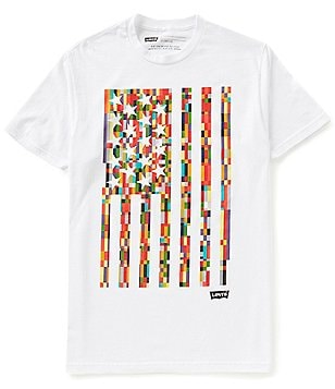 Levi´s® Kermay Short-Sleeve Crewneck Flag Graphic Tee