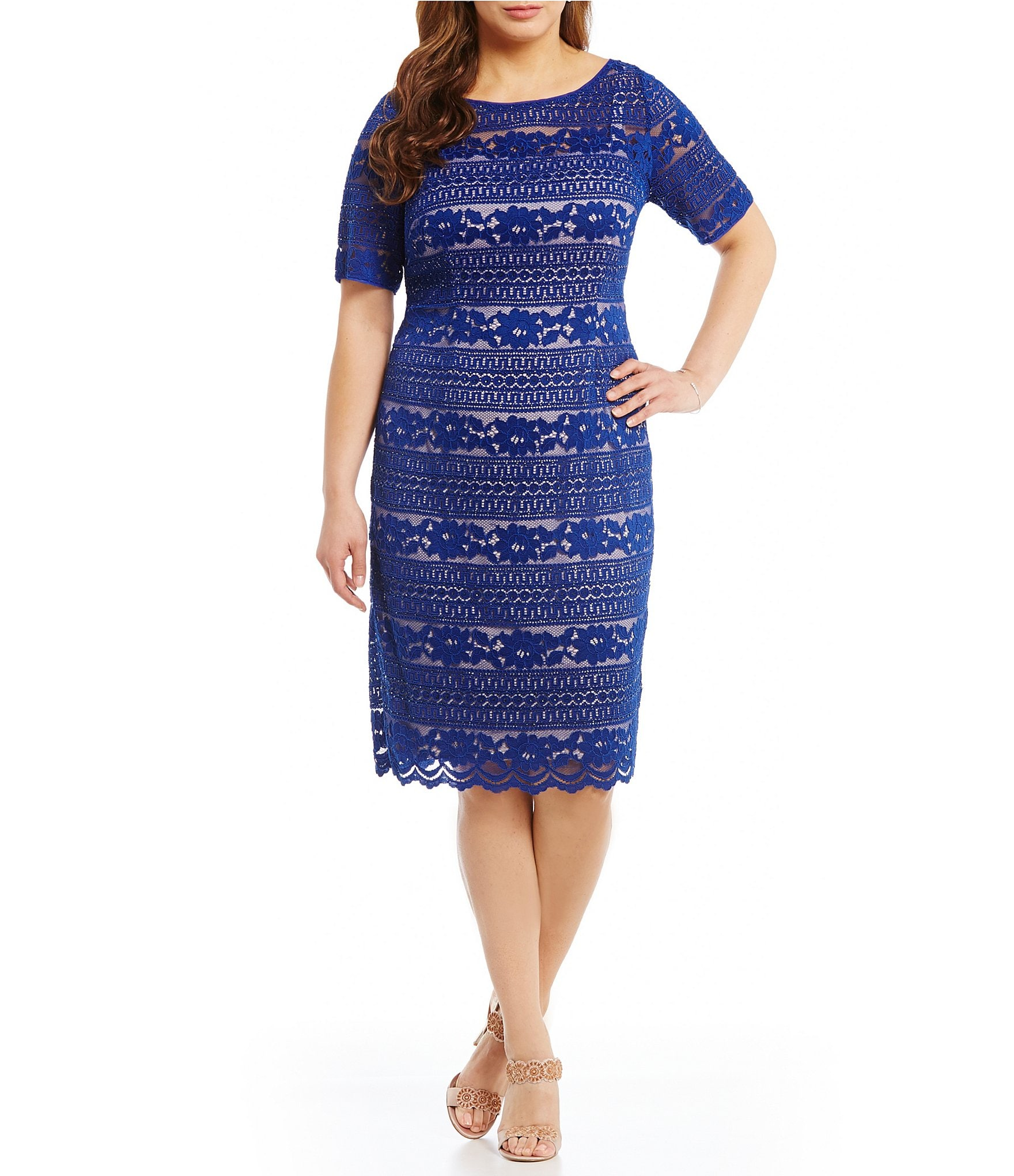 women s plus size clothing dillards