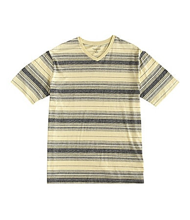 Roundtree & Yorke Striped V-Neck Tee