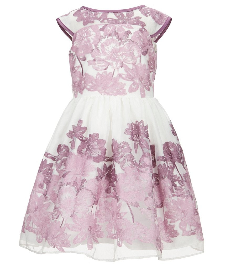 Pippa & Julie Little Girls 2T-6X Floral-Embroidered Dress