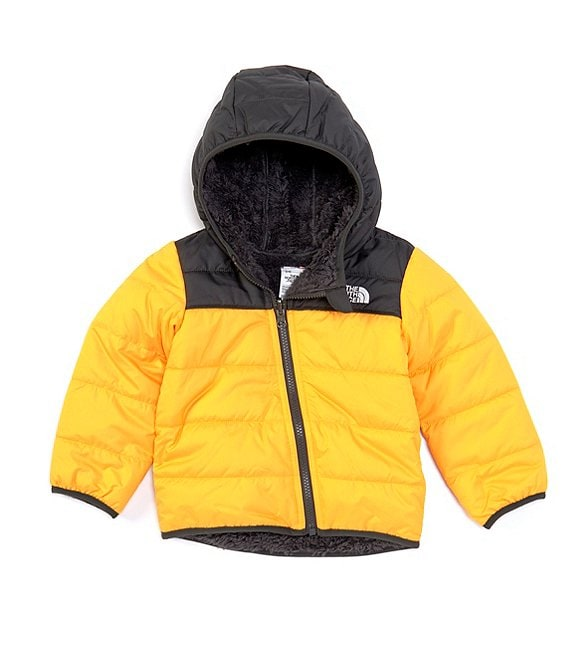 Color:Summit Gold - Image 1 - Baby Boys Newborn-24 Months Colorblock Reversible Mount Chimborazo Jacket