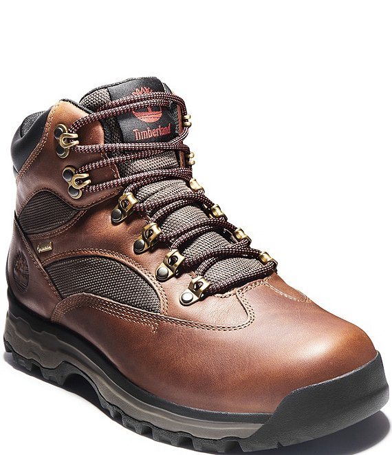 Timberland Men's Chocorua Trail 2 Mid Hiker with GORE-TEX Membrane
