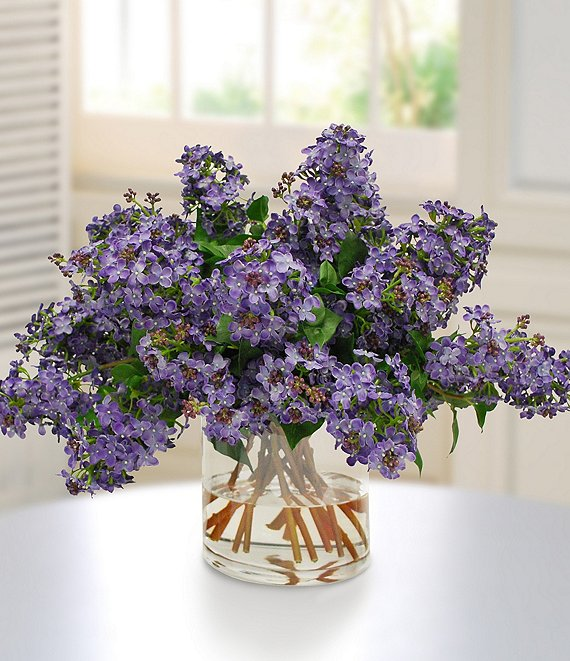 Winward Permanent Botanicals Lilac In Glass Vase