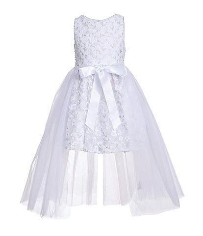Badgley Mischka Little Girls 4-6X Floral/Mesh Walk-Through Dress