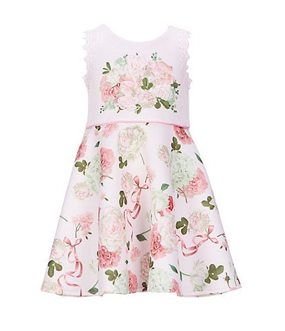 Biscotti Little Girls 4-6X Chiffon Flower-Applique/Floral Fit-And-Flare Dress