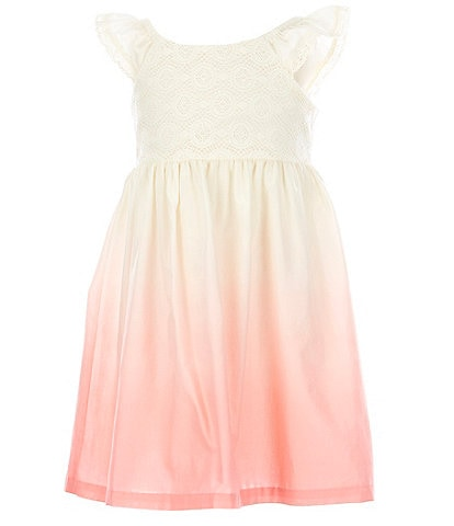 Bonnie Jean Toddler Girls 2T-4T Flutter-Sleeve Venise/Ombre Fit-And-Flare Dress