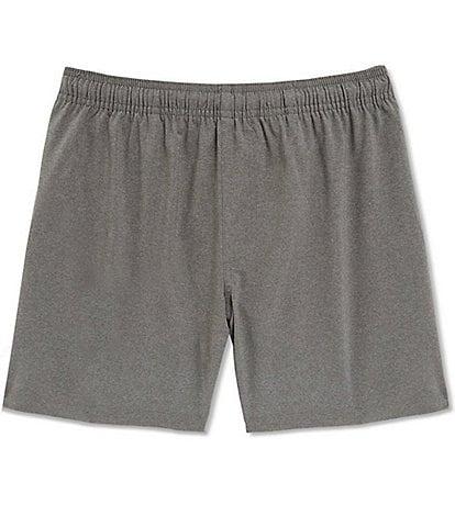 Chubbies The Stonehendges 5.5#double; Inseam Stretch Hybrid Athletic Shorts