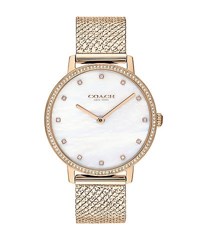 COACH Audrey Mesh Bracelet Watch