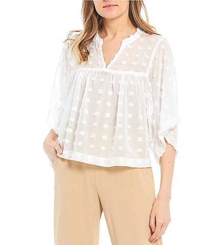 Evolutionary Short-Sleeve Large Clip-Dot Blouse Babydoll Top