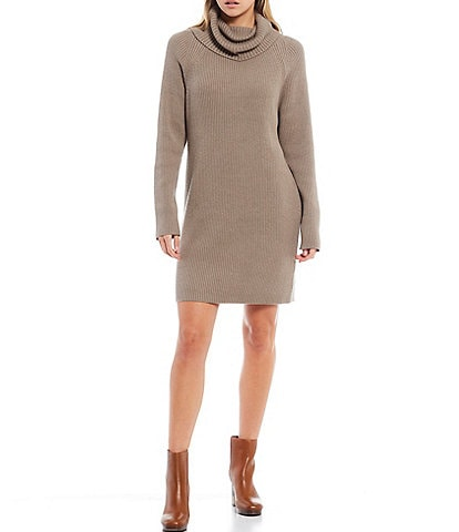 French Connection Katerina Turtle Neck Long Sleeve Knit Sweater Dress