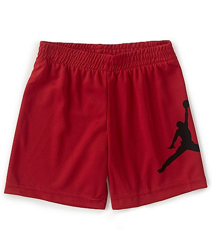 Jordan Little Boys 2T-7 Jumpman Wrap Mesh Shorts