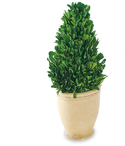 Mud Pie Cone Boxwood Pedestal Topiary
