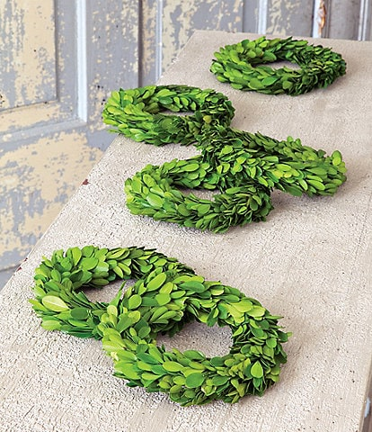 Park Hill Mini Preserved Boxwood Wreaths, Set of 6