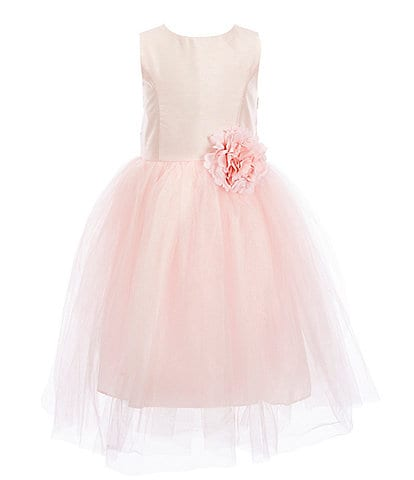 Pippa & Julie Little Girls 2T-6X Flower-Appliqued Ballerina Dress