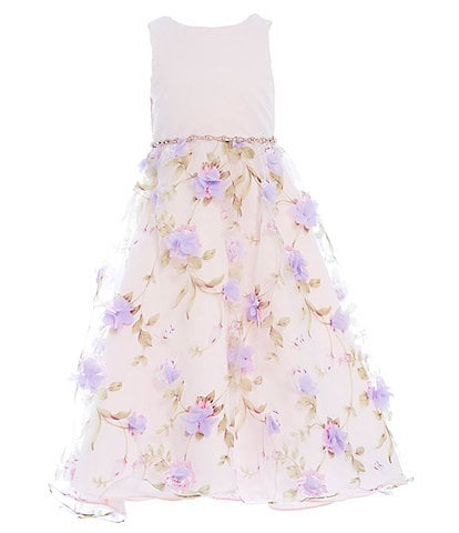 Rare Editions 2T-6X Sleeveless 3-D Floral Print Organza Gown