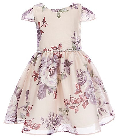 Rare Editions Little Girls 2T-6X Cap-Sleeve Floral-Printed Organza Fit-And-Flare Dress