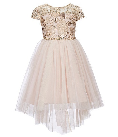 Rare Editions Little Girls 2T-6X Embroidered Bodice/Mesh Hi-Low Dress