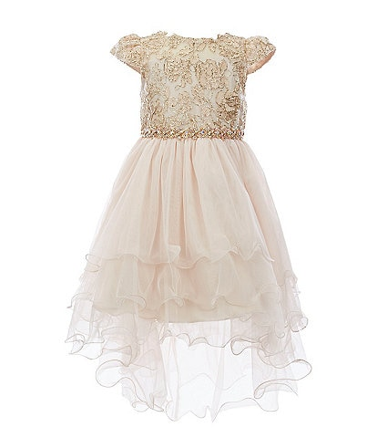 Rare Editions Little Girls 2T-6X Embroidered/Tiered-Mesh Hi-Low Dress