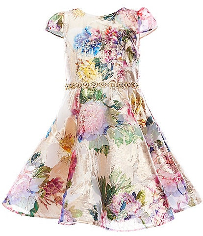 Rare Editions Little Girls 2T-6X Floral-Burnout Organza Cap Sleeve Belted Fit-And-Flare Dress