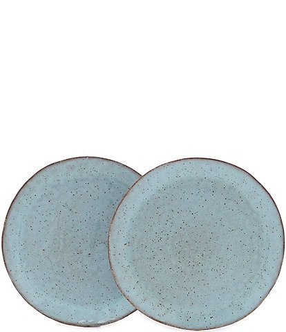 Southern Living Astra Collection Glazed Dinner Plate, Set of 2