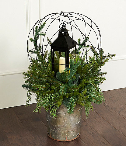 Southern Living Large Galvanized Base Topiary with Lantern