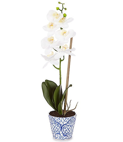 Southern Living Permanent Botanicals Natural Touch Single Phalaenopsis Orchid in Ceramic Pot