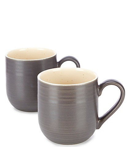 Southern Living Simplicity Speckled Coffee Mugs, Set of 2