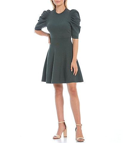 Ted Baker London Llorna Crew Neck Short Puff Sleeve Ruched Shoulder Fit and Flare Dress