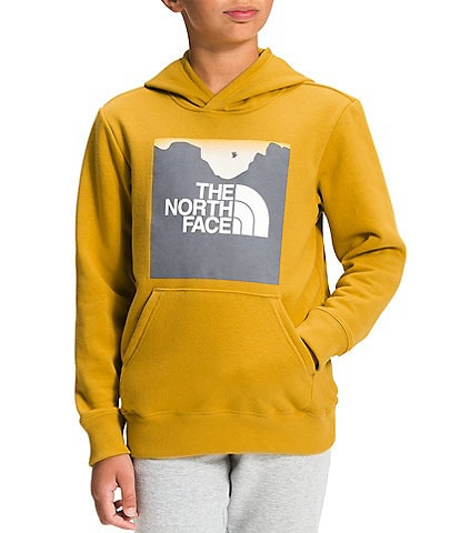 The North Face Little/Big Boys 5-20 Box-Fill Logo Camp Fleece Pullover Hoodie