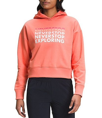 The North Face #double;Never Stop Exploring#double; Long Sleeve Logo Play Hoodie