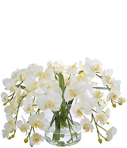 Winward Faux Flowers Orchid Phalaenopsis In Glass Vase