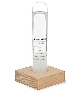 Image of Kikkerland Storm Glass