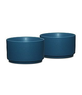 Image of Noritake 2-Piece Colorwave Coupe Matte Stoneware Ramekin Set