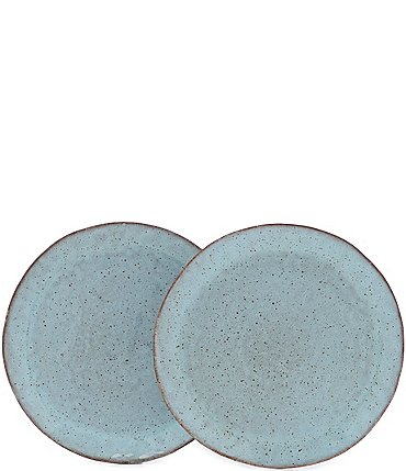Image of Southern Living Astra Collection Glazed Dinner Plate, Set of 2