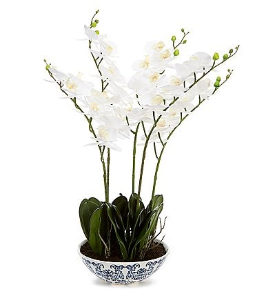 Image of Southern Living Permanent Botanicals Natural Touch Phalaenopsis Orchids in Ceramic Bowl